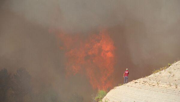 Orman yangını sırasında alevler 20- 30  metreye ulaştı. - Sputnik Türkiye