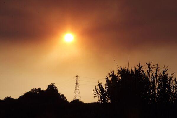 Orman yangını sırasında çıkan yoğun duman güneş ışıklarını engelledi. - Sputnik Türkiye