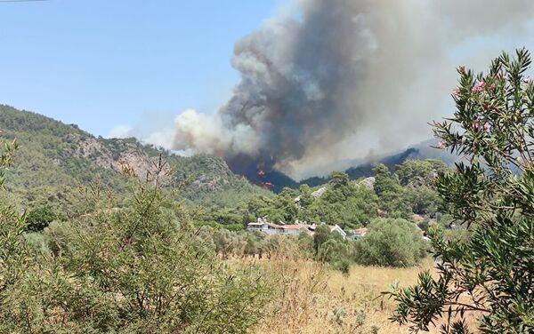 Sputnik Türkiye ekibi yangın bölgelerini görüntüledi. - Sputnik Türkiye
