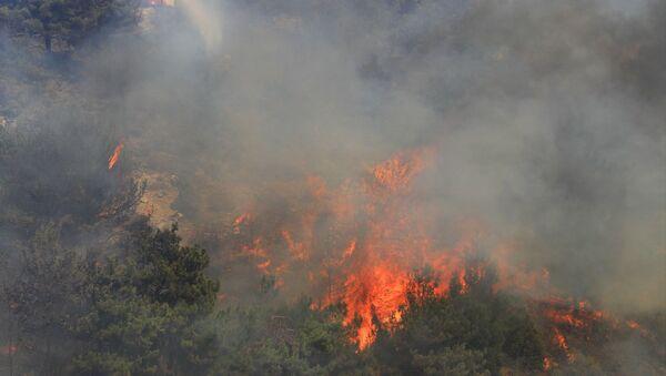Lübnan - orman yangını - Sputnik Türkiye