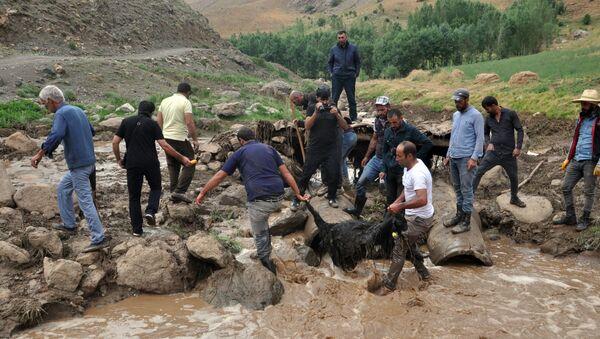Hakkari'nin Yüksekova ilçesine bağlı Kısıklı köyünün Dereiçi mezrasında meydana gelen selde 500 civarında koyun hayatını kaybetti. - Sputnik Türkiye