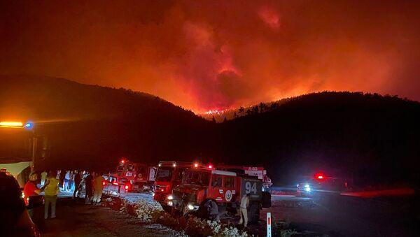 Milas'ın Beyciler Mahallesi'nde başlayan orman yangını, Bodrum'a sıçradı - Sputnik Türkiye