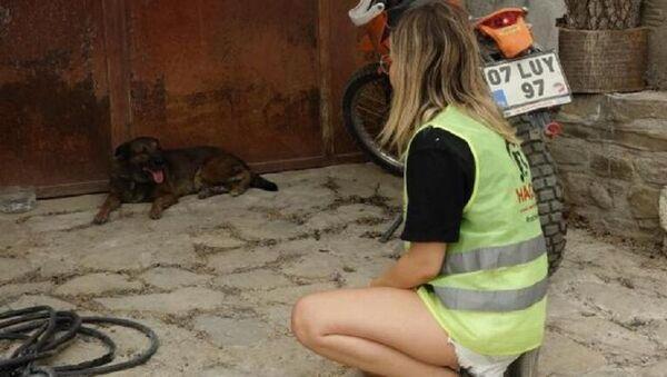 Ölen çiftin köpekleri evin önünden ayrılmıyor - Sputnik Türkiye