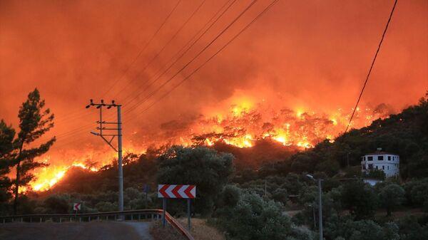 Muğla'nın Milas ilçesinde, ormanlık alanda çıkan ve yerleşim yerlerine sıçrayan yangın, kontrol altına alınmaya çalışılıyor. - Sputnik Türkiye