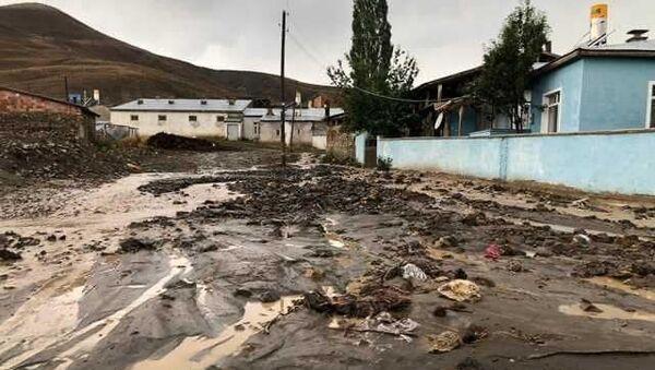 Bayburt'ta sağanak sele neden oldu: 11 hayvan öldü - Sputnik Türkiye