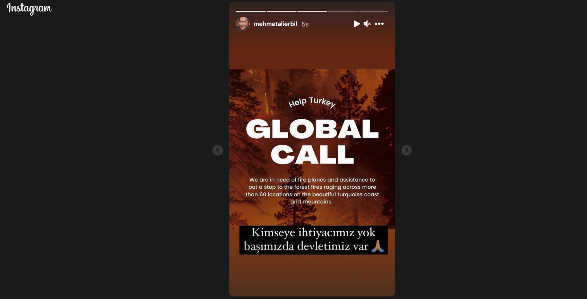 Şovmen Mehmet Ali Erbil, Instagram hesabından 'Help Turkey' paylaşımlarına ilişkin olarak açıklamada bulundu - Sputnik Türkiye, 1920, 10.08.2021