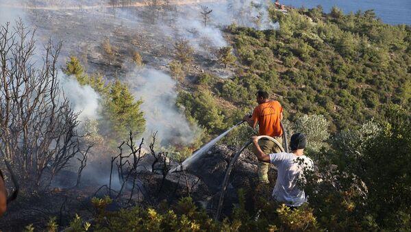 Muğla - Milas, yangın söndürme çalışmaları - Sputnik Türkiye