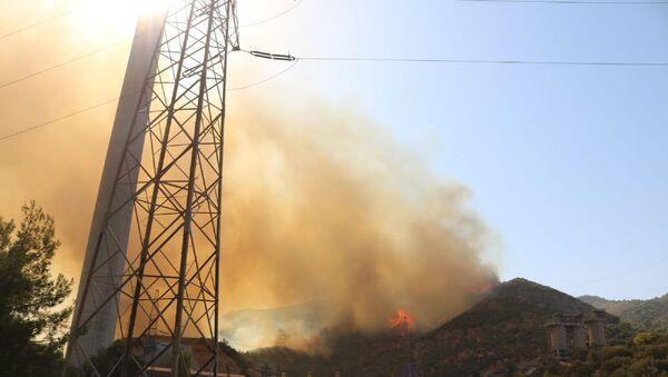 Kemerköy Termik Santrali yakınlarındaki orman yangını - Sputnik Türkiye