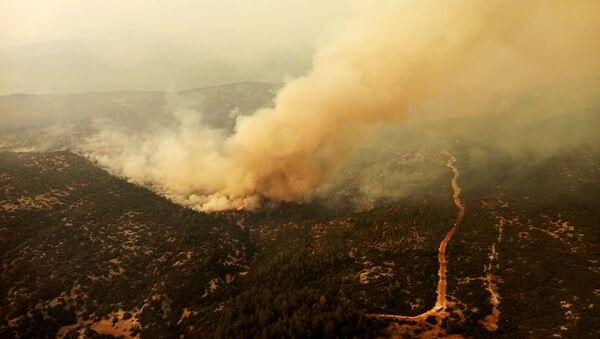 Muğla'da orman yangını - Sputnik Türkiye