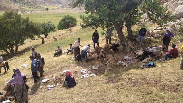 Hakkari'nin Yüksekova ilçesinde etkili olan sağanak sırasında ağaç altında olan 30 koyun telef oldu, 30'a yakın kuzu da yaralandı. - Sputnik Türkiye