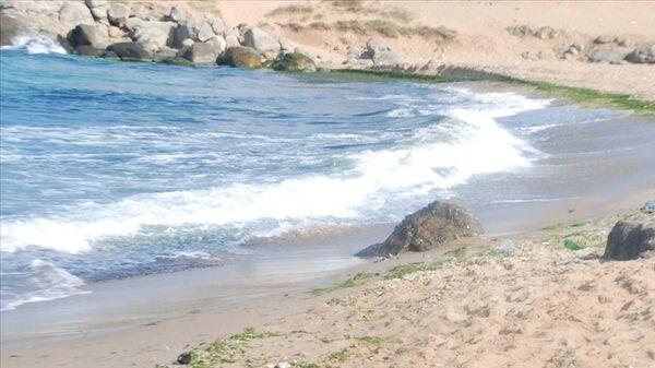 Beykoz sahillerinde yoğun dalga nedeniyle denize girmek yasaklandı - Sputnik Türkiye