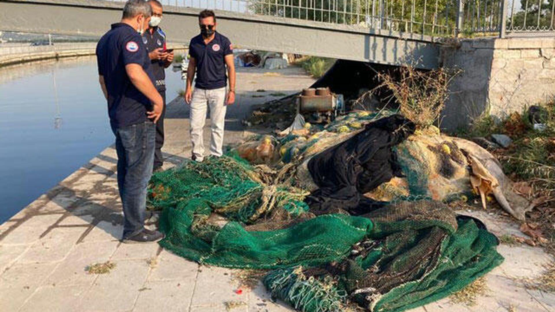 İstanbul'da kaçak yollarla avlanan yarım ton midye denize bırakıldı - Sputnik Türkiye, 1920, 27.08.2021