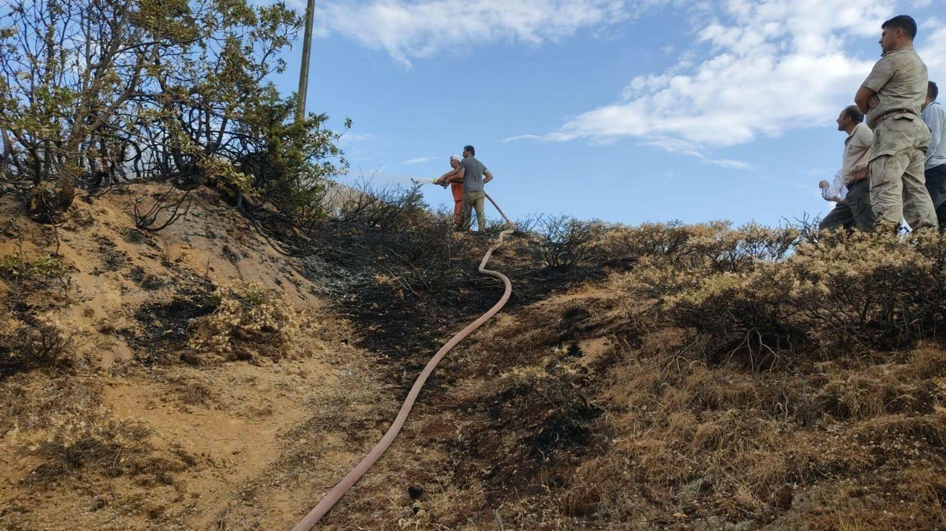 Bingöl'ün Genç ilçesindeki bir köyde çıkan orman yangını, ekiplerin hızlı müdahalesiyle büyümeden söndürüldü. - Sputnik Türkiye, 1920, 13.08.2021