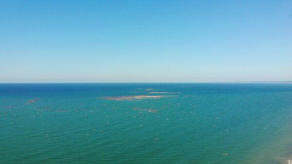Bölgedeki deniz trafiğini de etkileyen tomruklar karaya yakın bölgelerde akıntıyla birlikte sürüklenmeye devam ediyor. Karaya vuranlar iş makineleri ile kaldırılıyor. Henüz denizde kalanlar ise dehşet verici bir görüntü sunuyor. - Sputnik Türkiye