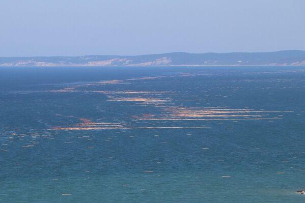 Selin sona ermesiyle birlikte Sinop'un Karadeniz sahilleri bu ilçelerden taşınan bölgelerden taşınan tomruklarla kaplandı. Kayıp bazı kişilerin cesetleri ise sahillerde tomrukların arasında bulunabildi. - Sputnik Türkiye