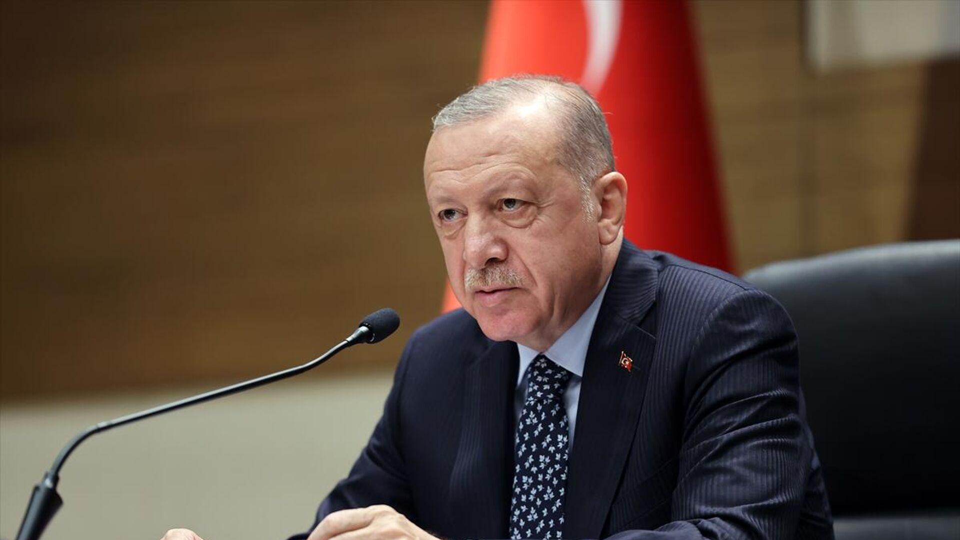 Recep Tayyip Erdoğan - Sputnik Türkiye, 1920, 31.08.2021