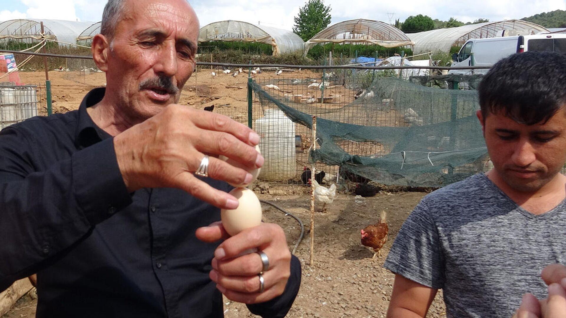 Yumurtanın taze olup olmadığını saptayan tavuk yetiştiricisi - Sputnik Türkiye, 1920, 17.09.2021