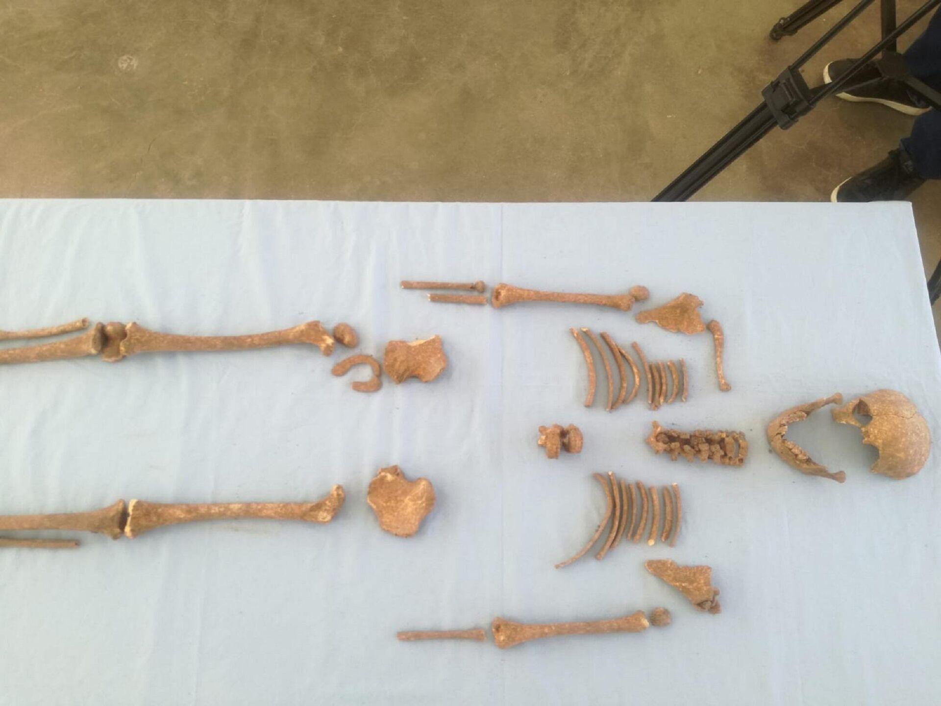 Domuztepe Höyüğü'nde Orta Çağ Dönemi'ne ait çocuk iskeleti bulundu - Sputnik Türkiye, 1920, 20.09.2021