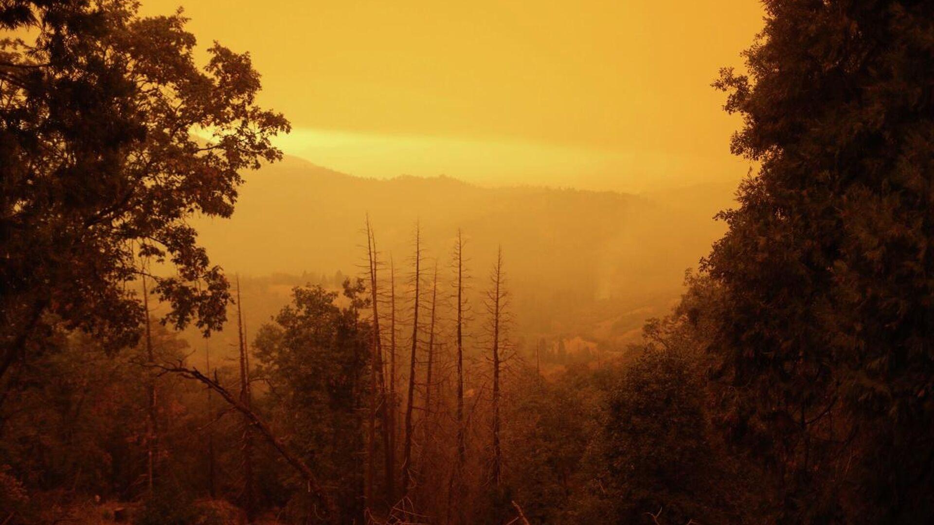 ABD - Kaliforniya - orman yangını - Sputnik Türkiye, 1920, 28.09.2021