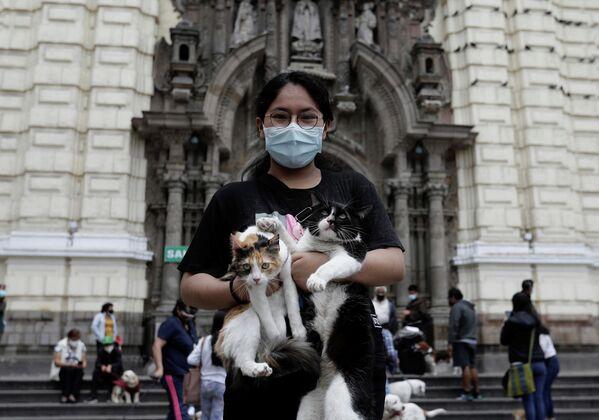 Peru'nun başkentiLima'da onlarca hayvan sahibi, 'Hayvanlarını Kutsama' gününde evcil hayvanlarını vaftiz ettirmek için bir araya geldi. REUTERS/Angela Ponce - Sputnik Türkiye