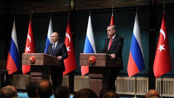 Erdoğan- Putin görüşmesi - Sputnik Türkiye