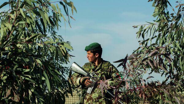 Afganistan ordusundan bir asker - Sputnik Türkiye