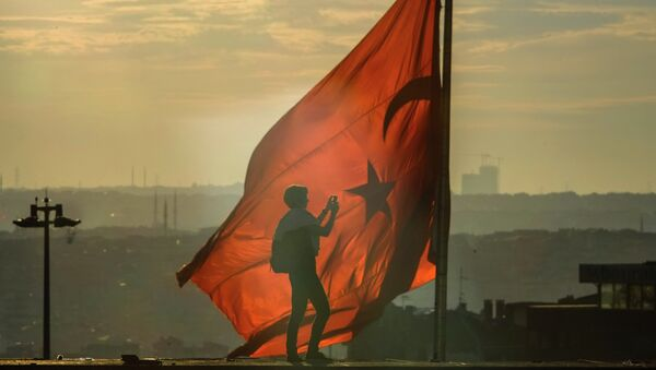 Türkiye bayrağı - Sputnik Türkiye
