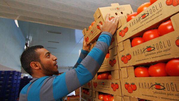 Türkiye-Rusya ihracatı, Antalya'da masaya yatırılacak - Sputnik Türkiye