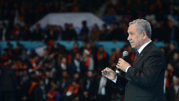 Türkiye Başbakan Yardımcısı Bülent Arınç - Sputnik Türkiye