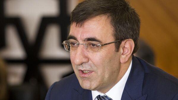 Kalkınma Bakanı Cevdet Yılmaz - Sputnik Türkiye