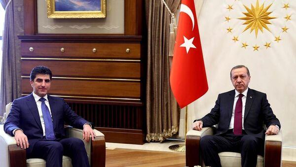 Recep Tayyip Erdoğan- Neçirvan Barzani - Sputnik Türkiye
