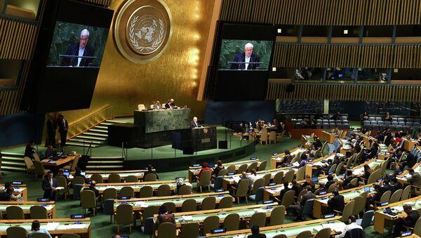 Birleşmiş Milletler - Sputnik Türkiye