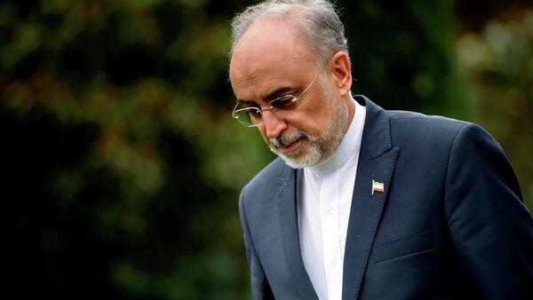 İran Atom Enerjisi Kurumu Başkanı Ali Ekber Salihi - Sputnik Türkiye