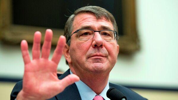 ABD Savunma Bakanı Ashton Carter - Sputnik Türkiye