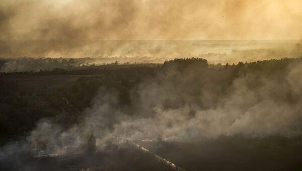 Çernobil nükleer santrali yakınlarındaki yangın - Sputnik Türkiye