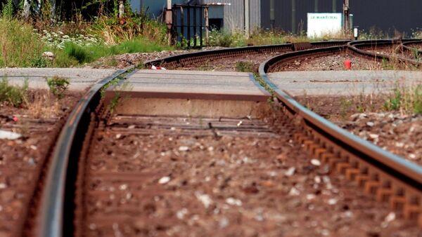 İsviçre- tren - Sputnik Türkiye