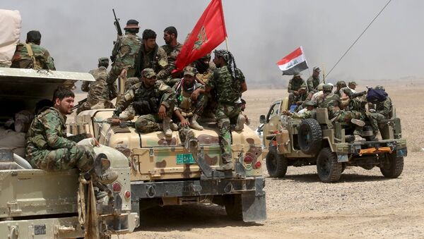 Iraklı Şii milisler - Sputnik Türkiye