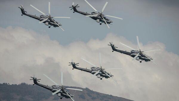Gökyüzünün avcı kuşları - Sputnik Türkiye