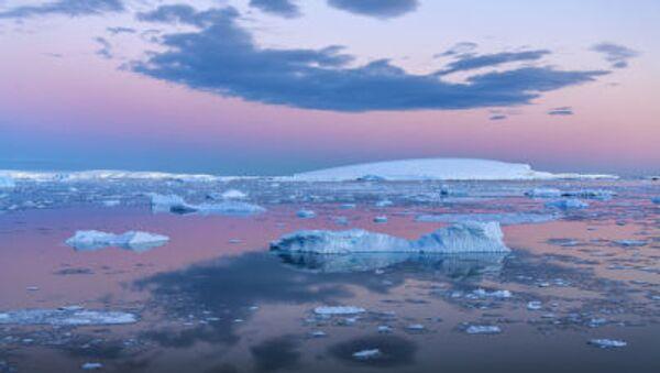 Antarktika'daki Weddell Denizi - Sputnik Türkiye