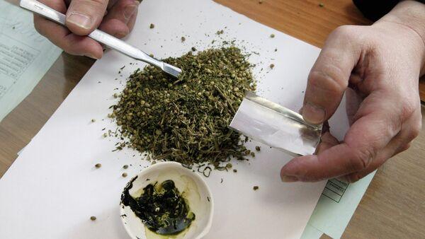 Esrar, marihuana, uyuşturucu - Sputnik Türkiye