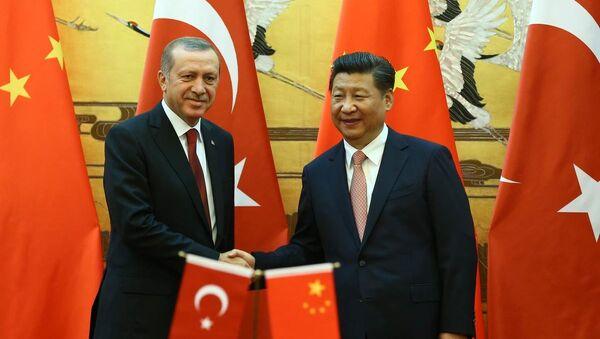 Recep Tayyip Erdoğan & Şi Cinping - Sputnik Türkiye