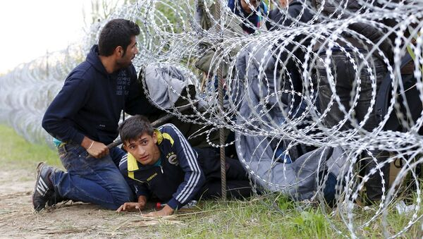 Sırbistan - Macaristan - Sınır - Göçmen - Sputnik Türkiye