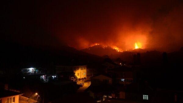 Bursa'da orman yangını  - Sputnik Türkiye