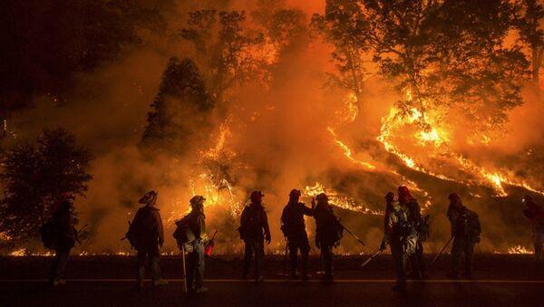 ABD orman yangını - Sputnik Türkiye