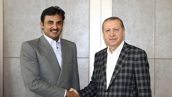 Cumhurbaşkanı Recep Tayyip Erdoğan, İstanbul'da Katar Emiri Şeyh Temim Bin Hamed Al Sani ile görüştü. - Sputnik Türkiye