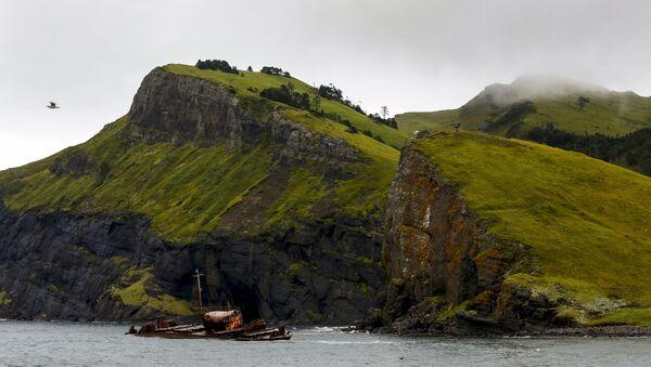 Şikotan adasının kıyılarında bir geminin paslı iskeleti. - Sputnik Türkiye