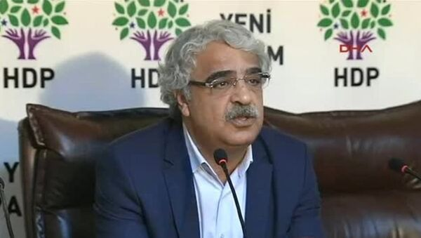 HDP Mardin Milletvekili Mithat Sancar - Sputnik Türkiye