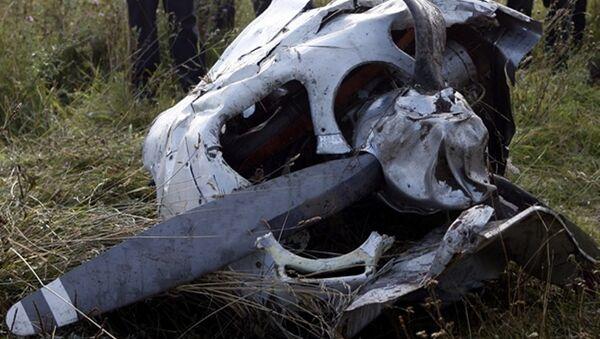 Kırım'da düşen özel uçak - Sputnik Türkiye