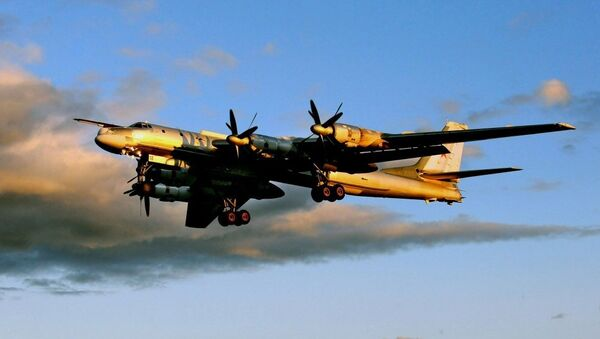 Tu-95MS - Sputnik Türkiye