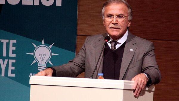 AK Parti Genel Başkan Yardımcısı Mehmet Ali Şahin - Sputnik Türkiye